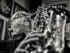 Klaus Graf Quartett -