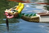 Nürtinger Drachenboot-Cup