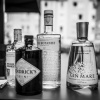 The Gin Tonic Experience / Gin-Tasting