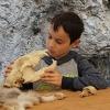 Steinzeitwerkstatt - Familienführung Knochen und Steine
