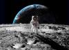 Rückkehr zum Mond: CAPCOM GO!